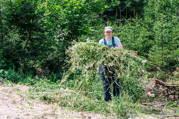 Aktionstag Münchner Unternehmen Des mach ma: Mitarbeiter von HD Plus engagieren sich für den Naturschutz und betreiben Biotoppflege im Perlacher Forst gemeinsam mit dem BUND Naturschutz in Bayern e.V.